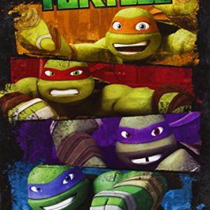 Las-Tortugas-Ninja-Temporada-1-DVD-0