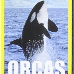 Orcas-Depredadoras-NatGeographic-DVD-0