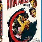 Atrapados-BD-Blu-ray-0