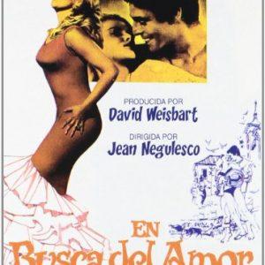 En-busca-del-amor-DVD-0