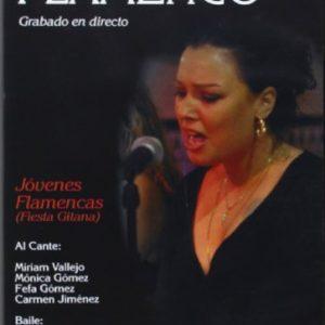 Noches-De-Flamenco-vol4-Fiesta-Gitana-DVD-0