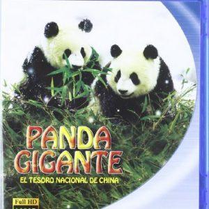 Panda-Gigante-El-Tesoro-Nacional-de-China-Blu-ray-0