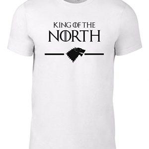 el-rey-en-el-norte